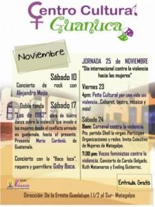 afiche-guanuca-Nov-web